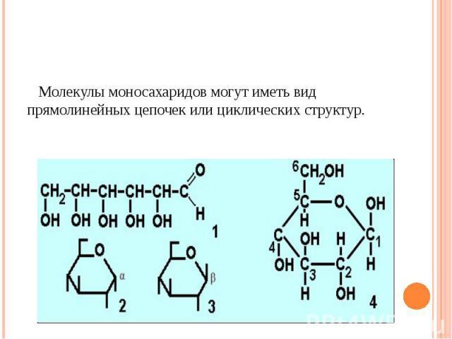 Молекулы моносахаридов могут иметь вид прямолинейных цепочек или циклических структур.