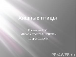 Хищные птицыКосьянова Е.Ю.МБОУ «СОШ№3 с УИОП»Г.Сорск Хакасия