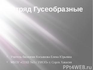 Отряд ГусеобразныеУчитель биологии Косьянова Елена ЮрьевнаМБОУ «СОШ №3 с УИОП» г