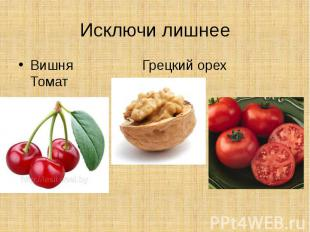 Исключи лишнееВишня Грецкий орех Томат
