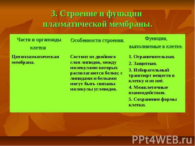 3. Строение и функции плазматической мембраны.