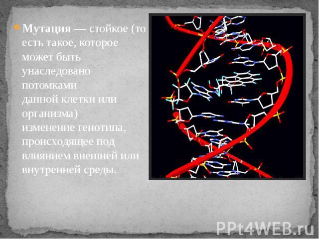 Мутация— стойкое (то есть такое, которое может быть унаследовано потомками даннойклеткиили организма) изменениегенотипа, происходящее под влиянием внешней или внутренней среды.