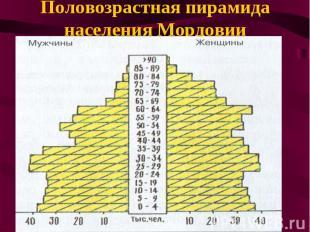Половозрастная пирамида населения Мордовии