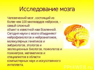 Исследование мозга Человеческий мозг, состоящий из более чем 100 миллиардов нейр