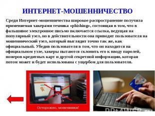 ИНТЕРНЕТ-МОШЕННИЧЕСТВО Среди Интернет-мошенничества широкое распространение полу