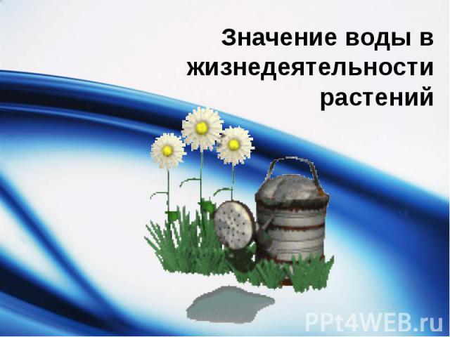 Значение воды в жизнедеятельности растений