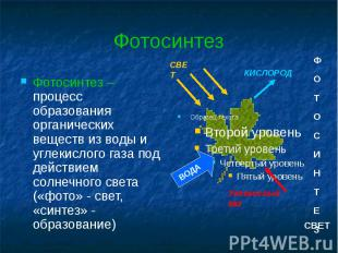 Фотосинтез Фотосинтез – процесс образования органических веществ из воды и углек