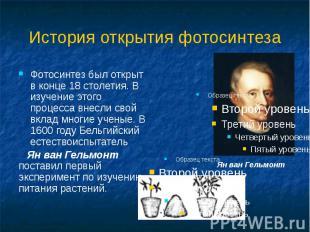 Фотосинтез был открыт в конце 18 столетия. В изучение этого процесса внесли свой
