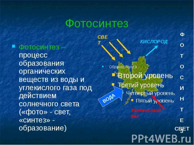 Фотосинтез Фотосинтез – процесс образования органических веществ из воды и углекислого газа под действием солнечного света («фото» - свет, «синтез» - образование)