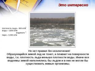 Это интересно плотность льда – 900 кг/мводы – 1000 кг/м водяного пара – 0,590 кг
