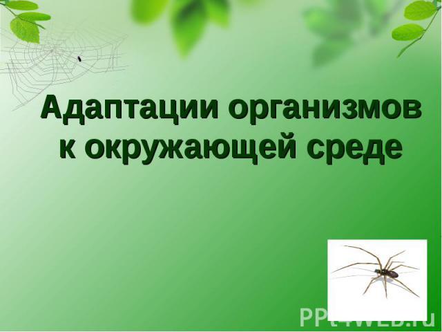 Адаптации организмов к окружающей среде