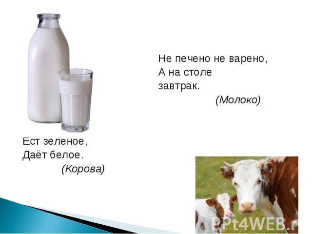 Не печено не варено, А на столе завтрак. (Молоко)Сама пестрая,Ест зелёное,Даёт белое. (Корова)