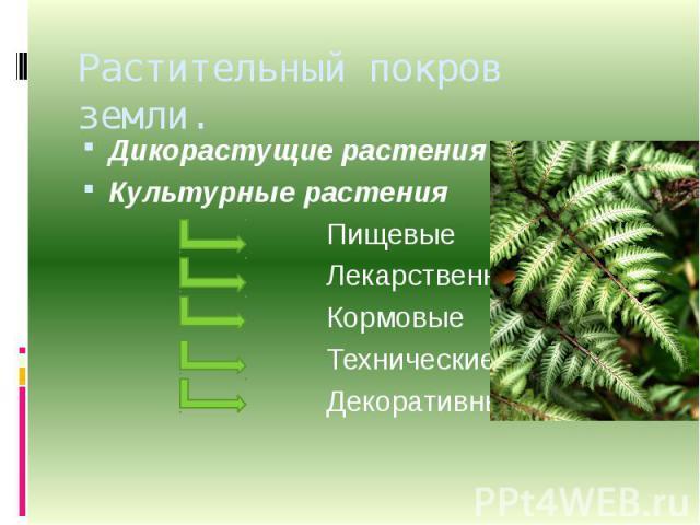 Растительный покров земли. Дикорастущие растенияКультурные растения Пищевые Лекарственные Кормовые Технические Декоративные