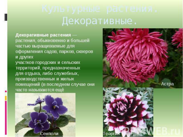 Культурные растения. Декоративные. Декоративные растения— растения, обыкновенно и большей частью выращиваемые для оформлениясадов,парков,скверови других участковгородскихисельских территорий, предназначенных дляотдыха, либо служебных, произ…