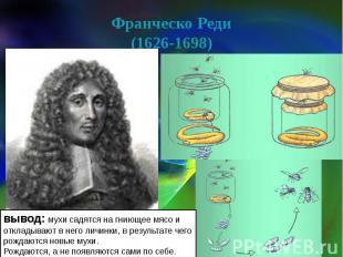 Франческо Реди(1626-1698) вывод: мухи садятся на гниющее мясо и откладывают в не