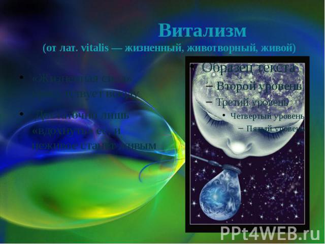 Витализм (от лат. vitalis — жизненный, животворный, живой) «Жизненная сила» присутствует всюду Достаточно лишь «вдохнуть» её, и неживое станет живым
