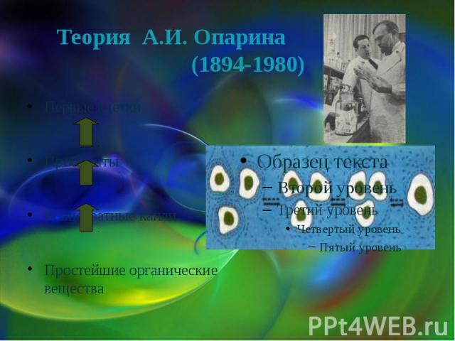 Теория А.И. Опарина (1894-1980)Первые клеткиПробионтыКоацерватные каплиПростейшие органические вещества
