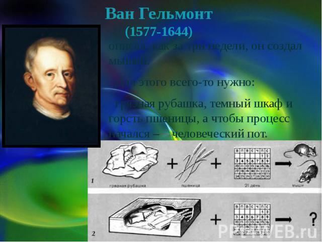 Ван Гельмонт(1577-1644) описал, как за три недели, он создал мышей. Для этого всего-то нужно: грязная рубашка, темный шкаф и горсть пшеницы, а чтобы процесс начался – человеческий пот.