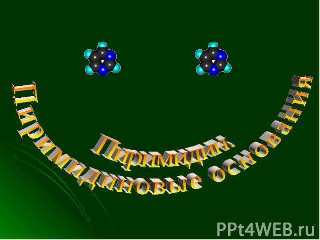 Пиримидин. Пиримидиновые основания