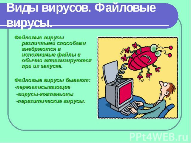 Виды вирусов. Файловые вирусы. Файловые вирусы различными способами внедряются в исполнимые файлы и обычно активизируются при их запуске. Файловые вирусы бывают: -перезаписывающие -вирусы-компаньоны -паразитические вирусы.