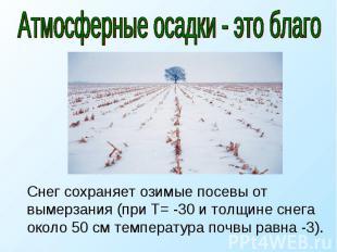 Атмосферные осадки - это благо Снег сохраняет озимые посевы от вымерзания (при Т