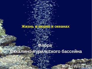 Жизнь в морях и океанах. Флора Сахалино-Курильского бассейна