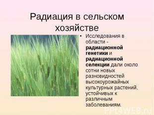 Радиация в сельском хозяйстве Исследования в области - радиационной генетики и р