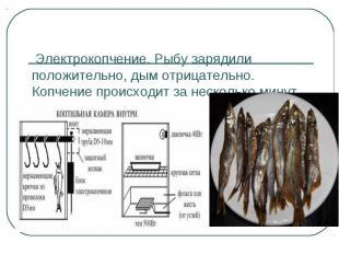 Электрокопчение. Рыбу зарядили положительно, дым отрицательно. Копчение происход