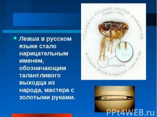 Левша в русском языке стало нарицательным именем, обозначающим талантливого выхо