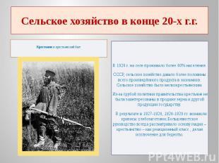 Сельское хозяйство в конце 20-х г.г.Крестьянеи крестьянский быт В 1928 г.
