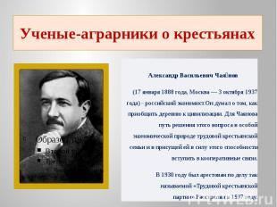 Ученые-аграрники о крестьянах Александр Васильевич Чаянов(17 января 1888 года,