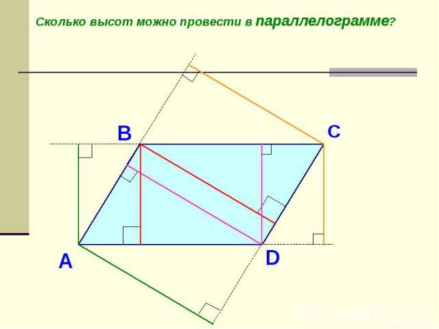 Сколько высот можно провести в параллелограмме?