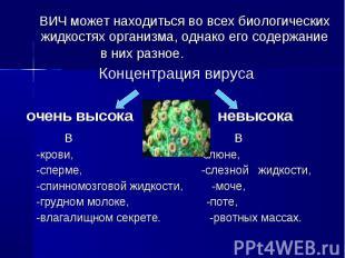 ВИЧ может находиться во всех биологических жидкостях организма, однако его содер