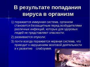 В результате попадания вируса в организм 1) поражается иммунная система, организ