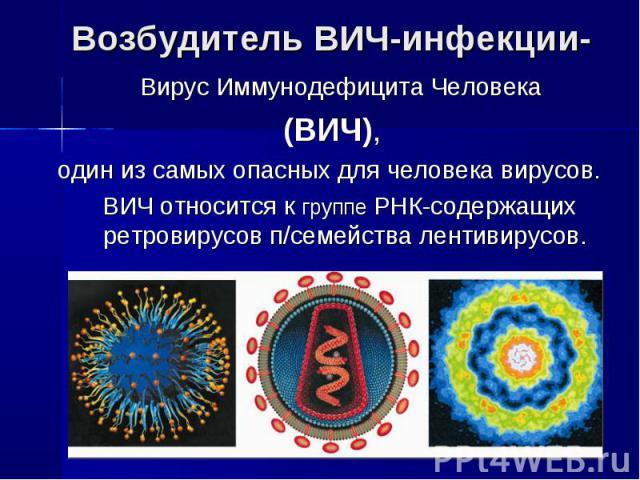 Возбудитель ВИЧ-инфекции- Вирус Иммунодефицита Человека (ВИЧ),один из самых опасных для человека вирусов. ВИЧ относится к группе РНК-содержащих ретровирусов п/семейства лентивирусов.