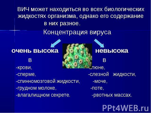 ВИЧ может находиться во всех биологических жидкостях организма, однако его содержание в них разное. Концентрация вируса очень высока невысока в в -крови, -слюне, -сперме, -слезной жидкости, -спинномозговой жидкости, -моче, -грудном молоке, -поте, -в…