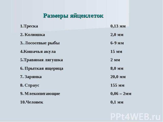 Размеры яйцеклеток
