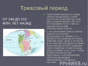 Триасовый период ОТ 248 ДО 213 МЛН. ЛЕТ НАЗАД География и климат Триасовый перио