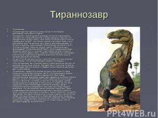 Тираннозавр ТираннозаврТираннозавр был одним из самых больших плотоядных динозав