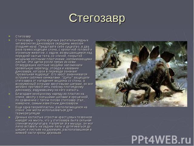 СтегозаврСтегозавры - группа крупных растительноядных четвероногих динозавров середины мезозоя (поздняя юра). Представте себе существо, в два раза превосходящее слона, с крохотной головой и огромным животом, с задом, возвышающемся над передней часть…