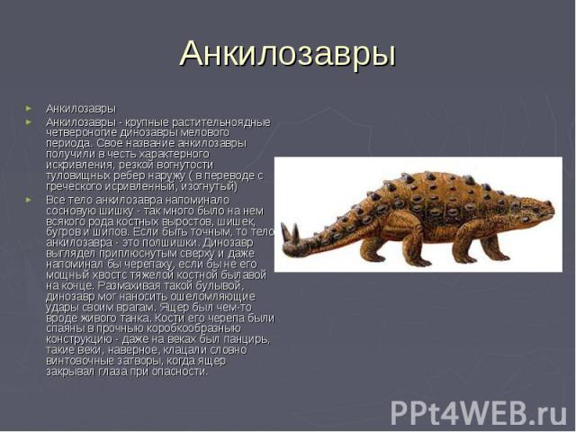 Анкилозавры Анкилозавры - крупные растительноядные четвероногие динозавры мелового периода. Свое название анкилозавры получили в честь характерного искривления, резкой вогнутости туловищных ребер наружу ( в переводе с греческого исривленный, изогнут…