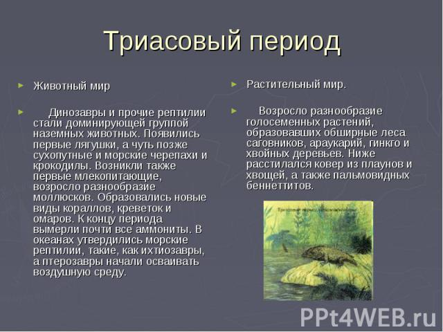 Триасовый период Животный мир Динозавры и прочие рептилии стали доминирующей группой наземных животных. Появились первые лягушки, а чуть позже сухопутные и морские черепахи и крокодилы. Возникли также первые млекопитающие, возросло разнообразие молл…