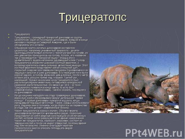 Трицератопс ТрицератопсТрицератопс - громадный трехрогий динозавр из группы цератопсов. Один из последних динозавров, живший в конце мелового периода в Северной Америке, где и были обнаружены его останки.Обширную группу рогатых динозавров составляли…