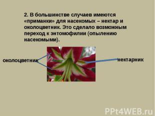 2. В большинстве случаев имеются «приманки» для насекомых – нектар и околоцветни