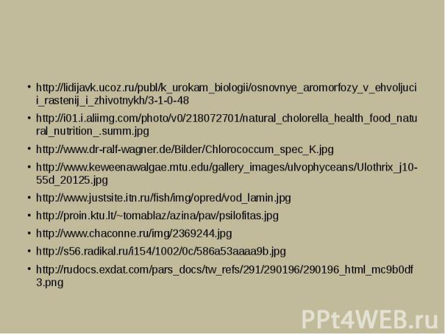 http://lidijavk.ucoz.ru/publ/k_urokam_biologii/osnovnye_aromorfozy_v_ehvoljucii_rastenij_i_zhivotnykh/3-1-0-48http://i01.i.aliimg.com/photo/v0/218072701/natural_cholorella_health_food_natural_nutrition_.summ.jpghttp://www.dr-ralf-wagner.de/Bilder/Ch…