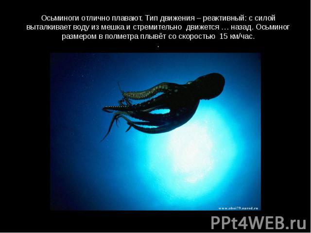 Осьминоги отлично плавают. Тип движения – реактивный: с силой выталкивает воду из мешка и стремительно движется … назад. Осьминог размером в полметра плывёт со скоростью 15 км/час..