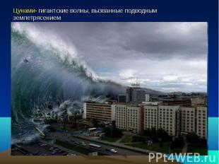 Цунами- гигантские волны, вызванные подводным землетрясением