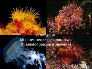 Тема урока:Морские кишечнополостные.Их многообразие и значение