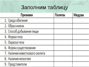 Заполним таблицу