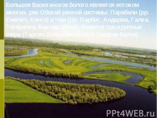 Большое Васюганское болото является истоком многих рек Обской речной системы: Па